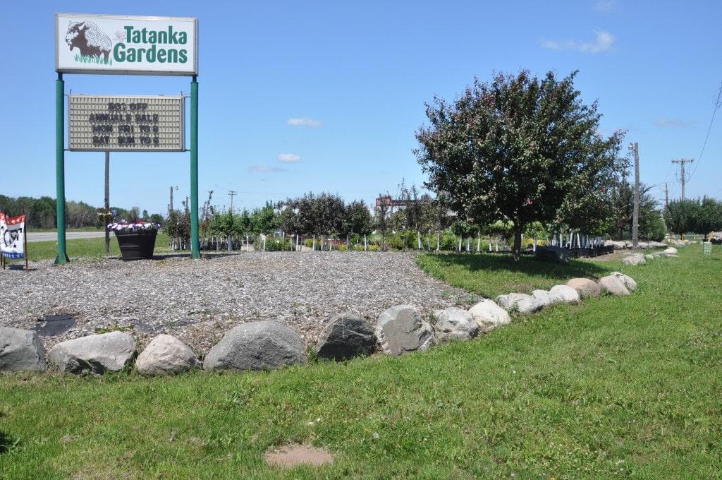 Buffalo – 1410 Hwy 55 East Redevelopment Corner